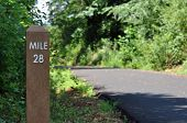 Mile marker along a biking, walking, and jogging path