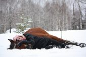 pic of horse girl  - Teenager girl and brown horse lying in the snow in winter forest