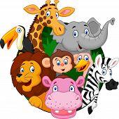 stock photo of cartoon animal  - Vector illustration of Cartoon safari animals isolated on white background - JPG