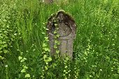 Old tombstone at an abandoned cemetery in Olomouc, Moravia, Czech Republic.