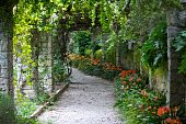 Green Bower With Flowers At Villa Hanbury Italy