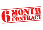 6 Month Contract
