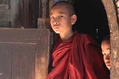 Young monk in Myanmar monastery