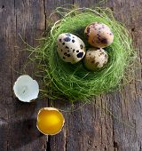 quail eggs in a nest on a wooden background
