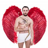 Sexy adult Cupid with big red wings. Valentine, Archangel, Angel