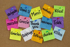 pic of thank you note  - Thank you in sixteen languages  - JPG