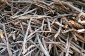 image of firewood  - A background of a pile of stocked firewood - JPG