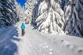 foto of black pants  - Woman in blue jacket and black pants walking on winter hiking trail - JPG
