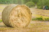stock photo of hay bale  - Bale of hay drying in the sun - JPG