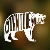 picture of born  - Silhouette of wild bear with text inside  - JPG