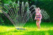 picture of sprinkler  - Child playing with garden sprinkler - JPG