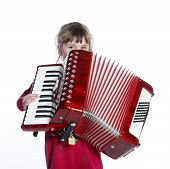 picture of accordion  - very young girl with accordion in studio against white background - JPG