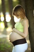 Pregnant Woman In Park