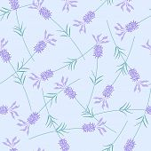 Lavender-seamless pattern.eps