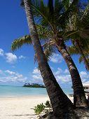 Rarotonga In The Cook Islands poster