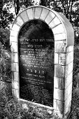 A monument commemorating the Jews. Gravestones in the old 400-year-old Jewish cemetery in Ozarow. Po