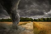 Постер, плакат: Large Tornado Disaster