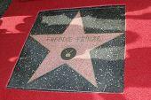 Los Angeles, ca Dec 14: Freddie Prinze Sterne im Rahmen einer Zeremonie in dem Freddie Prinze wird mit einem p geehrt