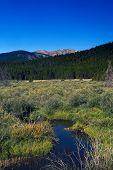 Mountain Stream In Colorado With Mountains