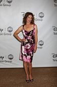 LOS ANGELES - AUG 7:  Nancy Travis arriving at the Disney / ABC Television Group 2011 Summer Press T