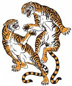 Pair Of Tigers In The Battle . Two Fighting Big Cats . Tattoo Style Vector Isolated Illustration poster