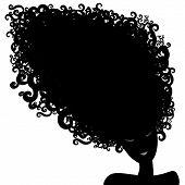 Woman Long Hair Silhuette