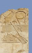 Relief At The Mortuary Temple Of Hatshepsut
