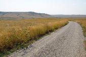 Rosebud Battlefield grassland road