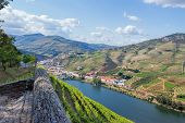 Douro Valley. Vineyards landscape of the Porto wine, near Pinhao village, Portugal. View from Casal  poster