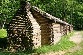 stock photo of hollow log  - Cabins in the woods in Jockey Hollow NJ - JPG