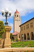 Hoover Tower And Buildings At Stanford University
