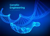 Dna Sequence In Hand. Wireframe Dna Molecules Structure Mesh. Dna Code Editable Template. Science An poster