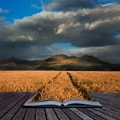 Beautiful Landscape Of Wheat Field Leading To Mountain Range With Dramatic Sky In Pages Of Book Crea