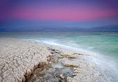 Costa del mar muerto