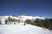 Sierra Nevada snow ranges