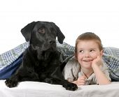boy and dog - four year old boy and his dog in bed isolated on white background