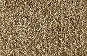 Carpet Closeup.