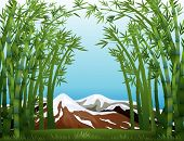 Illustration of a bamboo forest and the snowy mountain