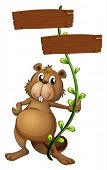 Illustration of a beaver holding a vine plant with signboards on a white background