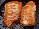 Duck Cooking Breast Roast