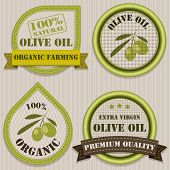 Olive Oil Labels.