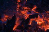 Carbón de leña arde