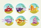 collection of marine life - fish, crab, snail