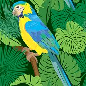 Seamless Pattern With Palm Trees Leaves And Blue Yellow  Macaw Parrot. Ready To Use As Swatch.