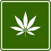 stock photo of marijuana leaf  - cannabis or marijuana leaf sign - JPG