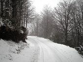 stock photo of snowy-road  - A beautiful snowy road in the countryside of Argentina - JPG