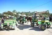 Carriages In Tunisia