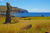 picture of cannibalism  - Moai Stone Statue at Rapa Nui Easter Island overlooking the coast Chile - JPG