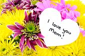 stock photo of i love you mom  - I Love You Mom tag among a colorful group of flowers - JPG