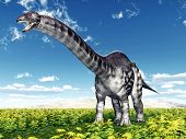 image of apatosaurus  - Computer generated 3D illustration with the Dinosaur Apatosaurus - JPG